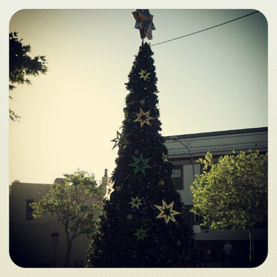 Pyrmont Christmas tree