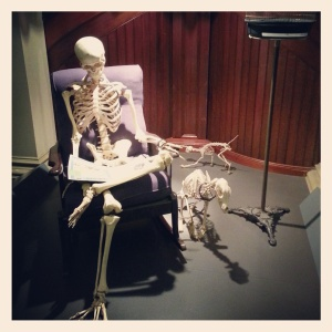 home sweet home; Skeleton exhibition