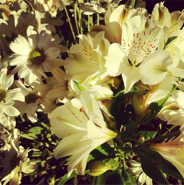 fridayflowers2