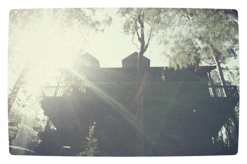 Casa de Jackson
