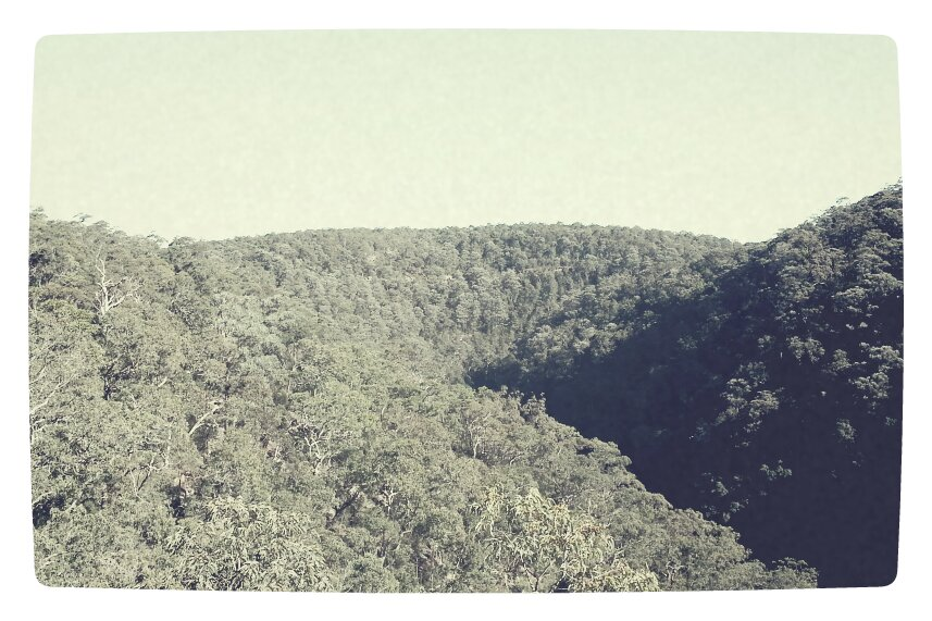 the view; Blue Mountains