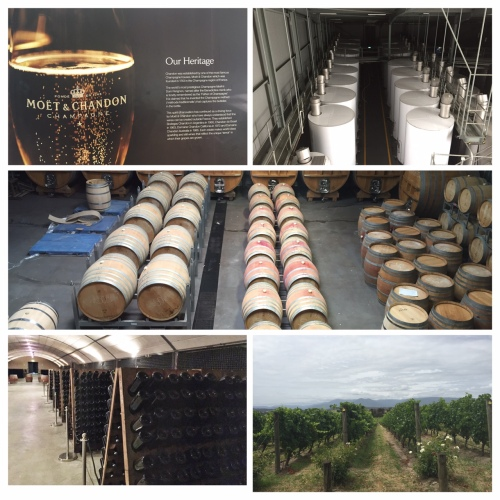 The production & cellar