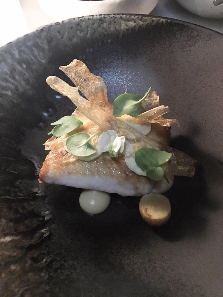 Today's wild caught fish roasted palm heart, parnsip, bone broth